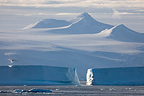 Large icebergs Antarctic Peninsula