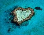 Heart-shaped coral reef Australia