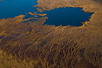 Aerial view of a peat bog in Lapland Finland