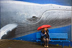 Woman sitting on bench below mural New Zealand (Humpback whale)
