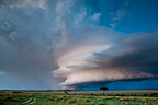 Storm on the Savannah Masai Mara Reserve Kenya�