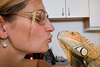 Owner of Red Iguana giving him a kiss