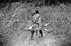 Bicycle transport bushmeat in the Congo savanna