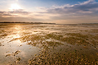 Baie de Somme Crotoy during high tides France�