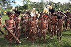 Children with feather headdress and paint  Papua New-Guinea