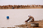 Man washing feet at a water point in Chad�