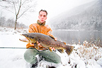 Presentation of a male brown trout in winter Alsace France  (Brown trout)