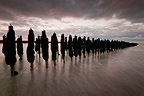 Dusk on the mussel-Quend Beach in the Somme