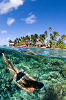 Swimming above a coral reef, Fakarava, French Polynesia