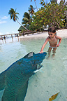 Little girl stroking a Humphead Wrasse, Fakarava, French Polynesia�