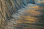 Flysch (tidal area) on Sakoneta Beach, Spain