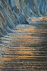 Flysch on Sakoneta Beach, Spain