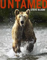 News From Steve Bloom Images Wildlife Stock Photo Library